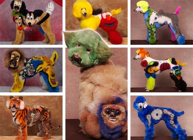 dogs-7-main_1747962p