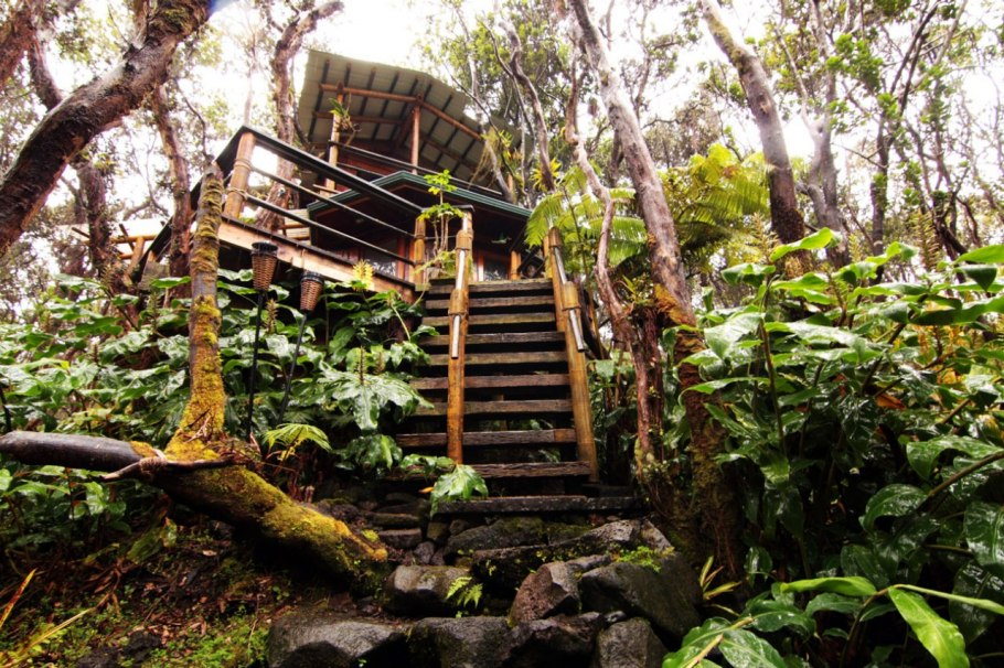 photos-luxury-tree-houses-airbnb.sw.16.airbnb-tree-houses-ss13