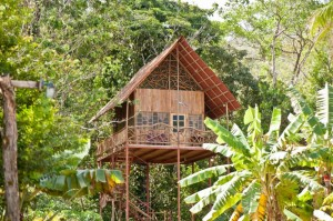 photos-luxury-tree-houses-airbnb.sw.8.airbnb-tree-houses-ss05