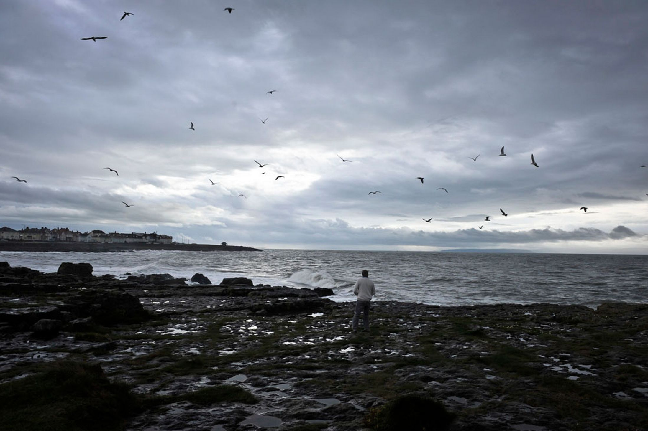 A-man-feeds-seagulls-by-the-sea-at-Porthcawl-Wales-beneath-stormy-skies-22nd-October-2641152
