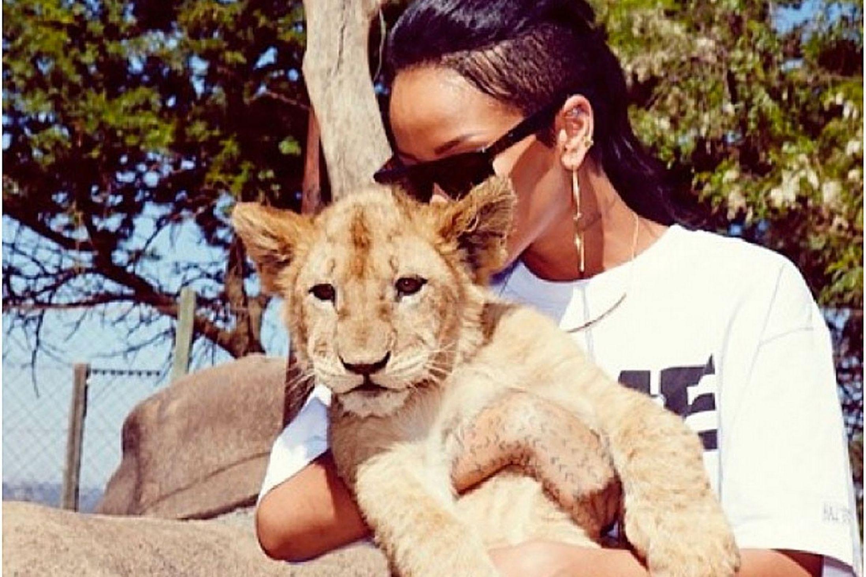 Rihanna-at-the-Zoo-2369506