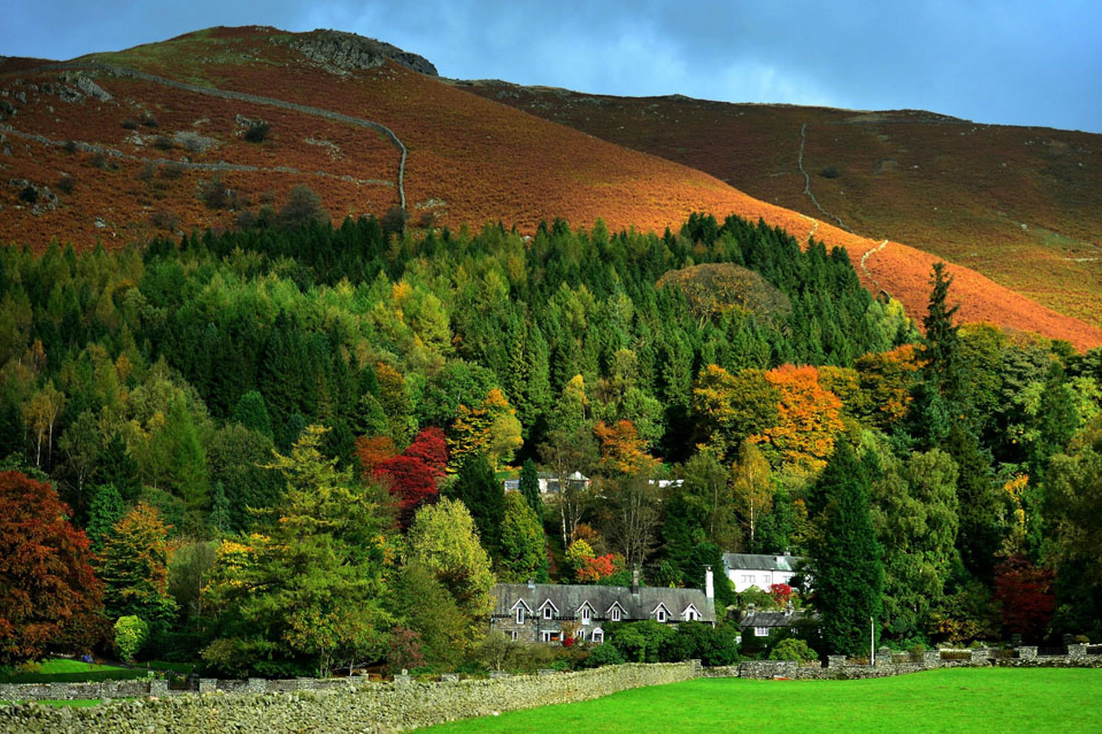 Stunning-colours-of-autumn-at-Grassmere-in-the-Lake-District-Cumbria-24th-October-2641174