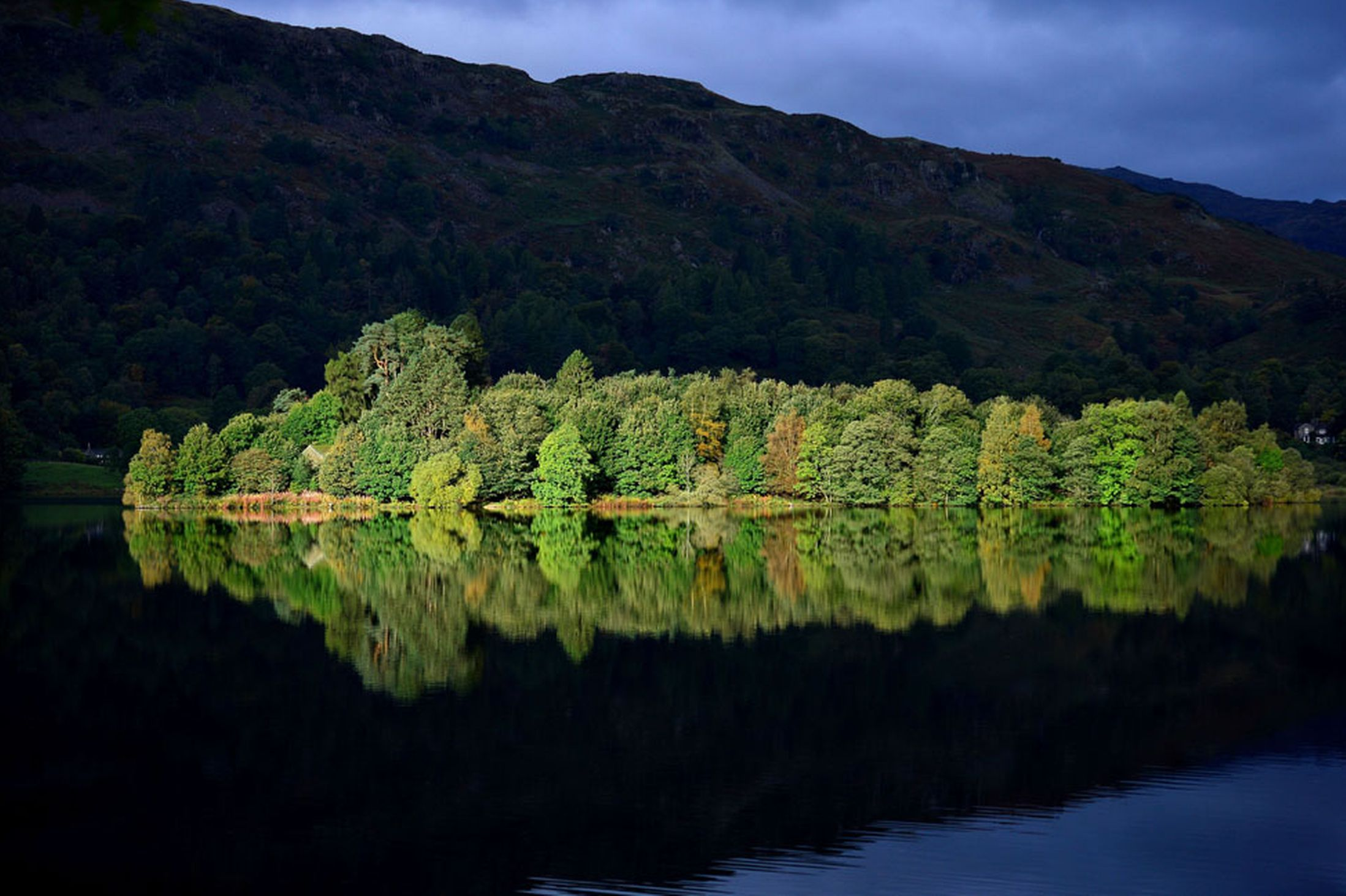 The-Autumn-sun-lights-up-an-island-on-Grasmere-Lake-in-the-Lake-District-Cumbria-6t-October-2641161