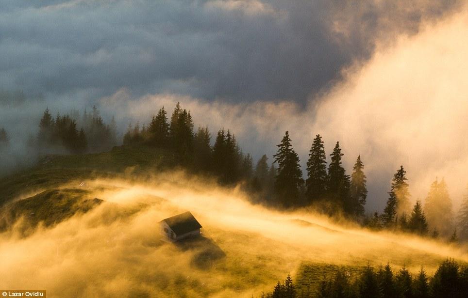 Romanya'dan bu fotoğraf... Sis ve ışığın uyumu...