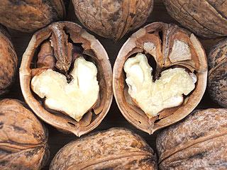 nuts-320